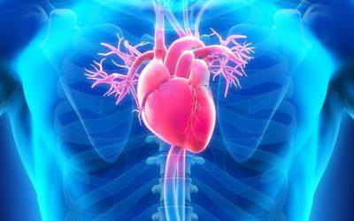 Une simple injection pourrait réduire considérablement le risque de crise cardiaque